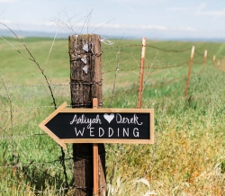 galas-barn-wedding-california-reverie-gallery-14
