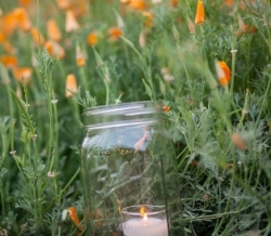 ramona-arnold-favorites-0024